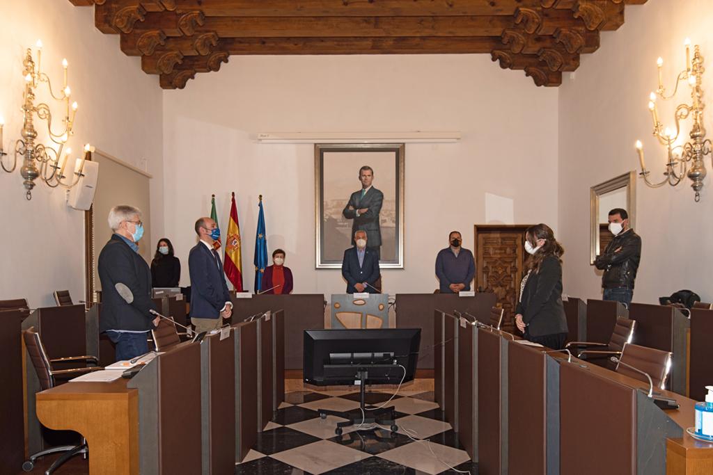 El Pleno de la Diputación